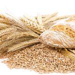 gluten coeliakie glutenintolerantie